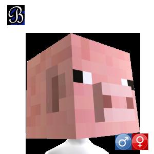 15 de Septiembre... Mascaras de Minecraft 584111f7-01